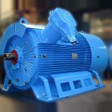 MIB-1500-kW-1500-rpm-3000-V-FELM-Italy-2000